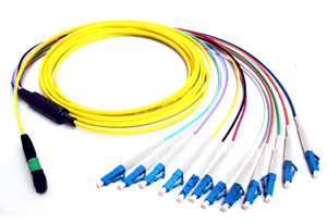MTP(MPO) Harness Cable