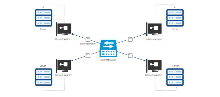 alt25G Server Adapter Selection Guide